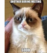 Grumpy Cat Team Meeting Meme